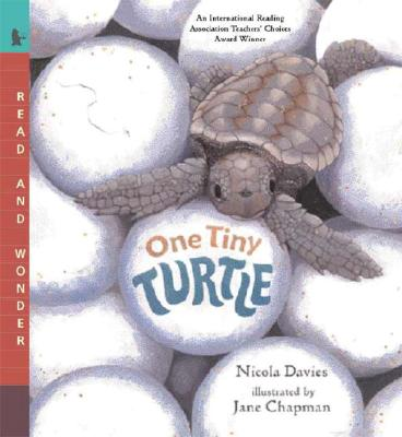 One Tiny Turtle By Davies, Nicola/ Chapman, Jane (ILT)